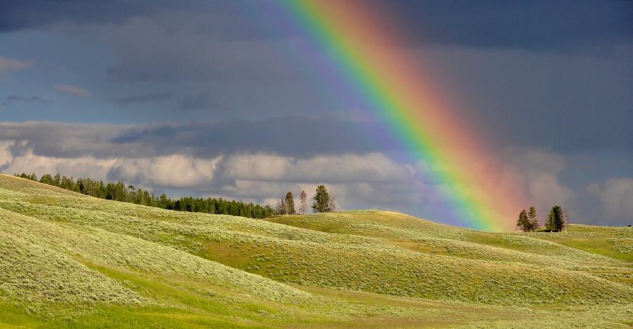 visible light spectrum.png